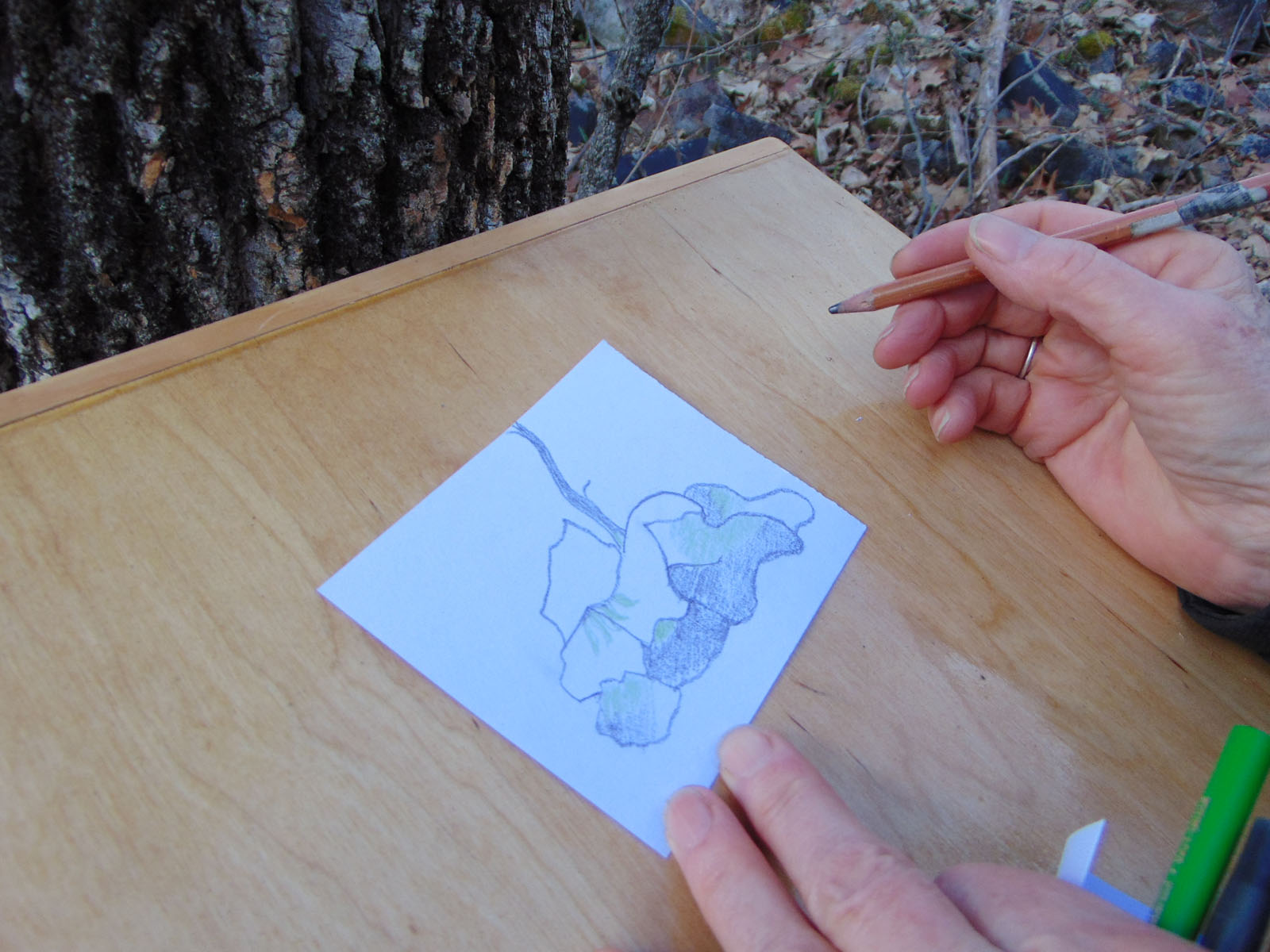 The Drawing Box Project